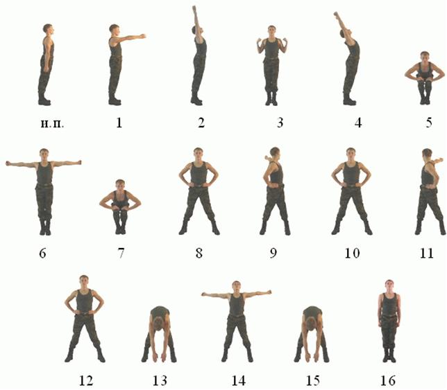 ежедневная гимнастика
