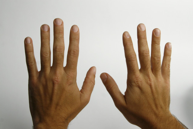 перстнечерпаловидный сустав