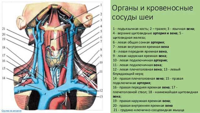Нехватка дыхания при остеохондрозе