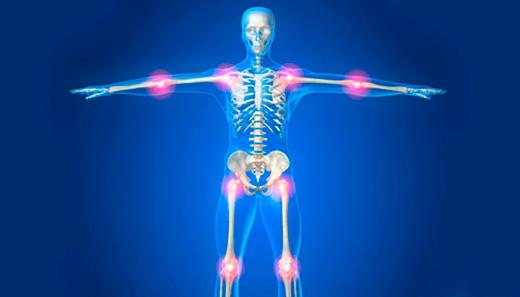 суставы человека